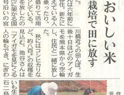 アイガモ中日新聞