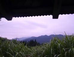 空き家からの眺め